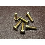 Rotor Bolts 5/16-24x1 (qty. 6)